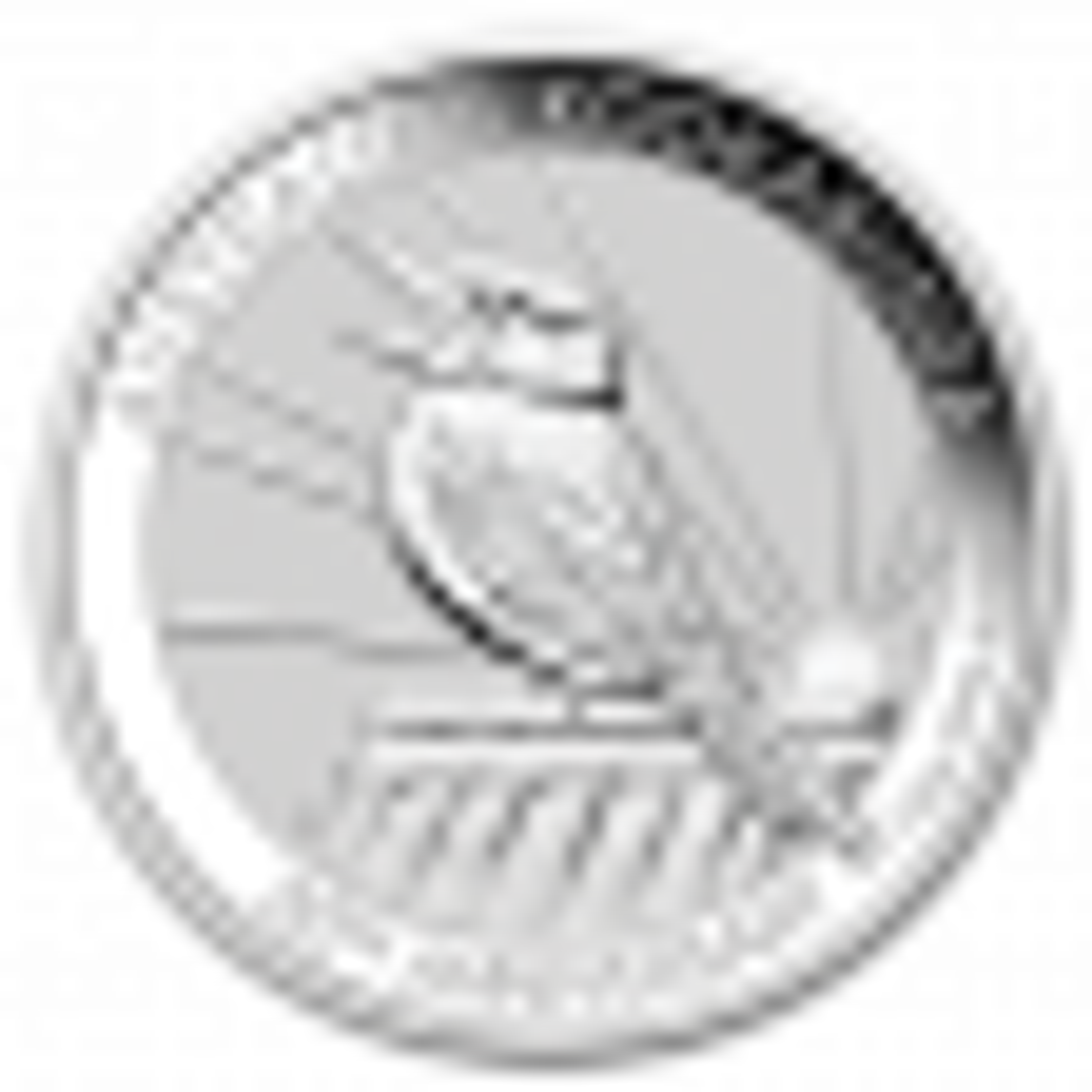 10 Troy ounce zilveren munt Kookaburra 2020
