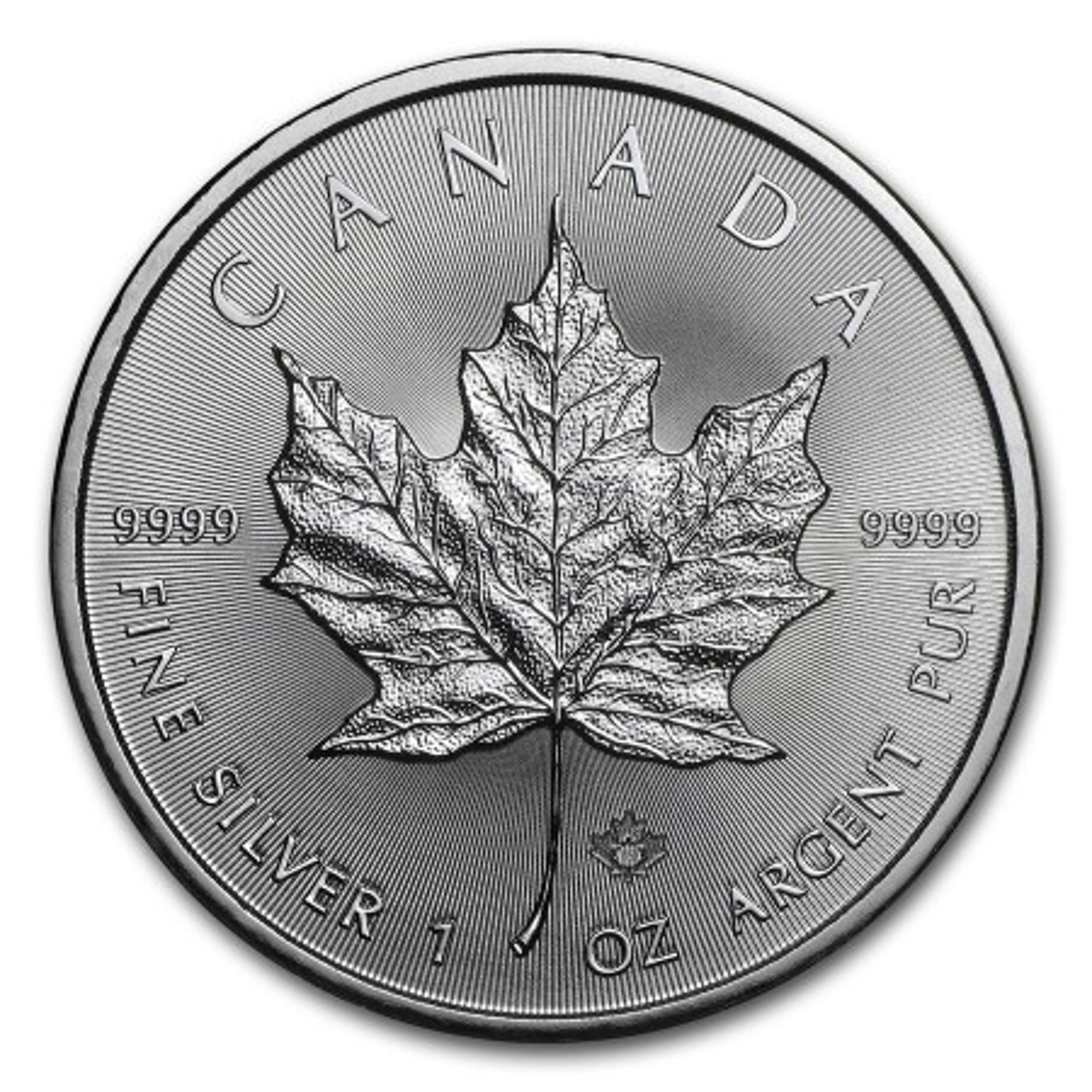 1 Troy ounce zilveren Maple Leaf munt 2019